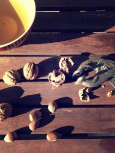 gouter d'automne détail noix